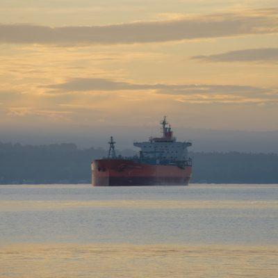 Le canal de Suez à nouveau bloqué par un cargo, le commandant avance une motivation écologique